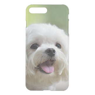 White maltese dog sticking out tongue iPhone 8 plus/7 plus case