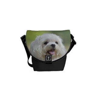 White maltese dog sticking out tongue messenger bag