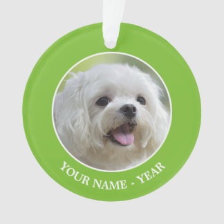 White maltese dog sticking out tongue ornament