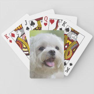 White maltese dog sticking out tongue poker deck
