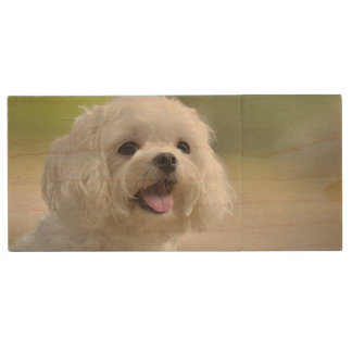 White maltese dog sticking out tongue wood USB flash drive