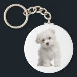 "White Maltese Puppy Dog Love Custom Keychain<br><div class=""desc"">Love at first sight! Who can resist the sweet face of a Maltese puppy dog? This fun keychain features a white Maltese puppy standing on a crisp clean white background. Every time you use your keys this cute Maltese Pup will send you lots of love. A puppy keychain will make...</div>"