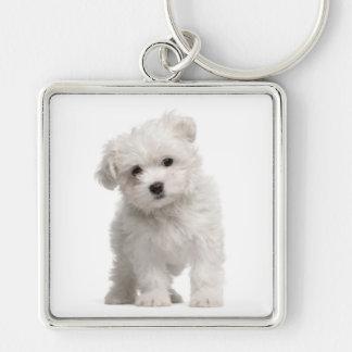 White Maltese Puppy Dog Love Custom Keychain