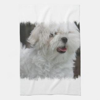 White Maltese Puppy Kitchen Towel
