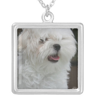 White Maltese Puppy Necklace