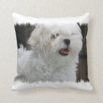 White Maltese Puppy Pillow