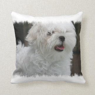 White Maltese Puppy Pillow