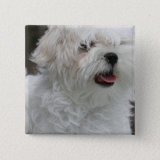 White Maltese Puppy Square Pin