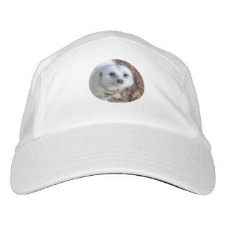 White_Meerkat,_Top_Class_Knit_Performance_Cap. Headsweats Hat