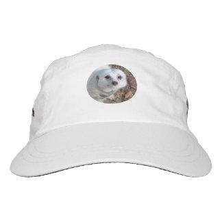White_Meerkat,_Top_Class_Woven_Performance_Cap. Headsweats Hat