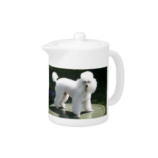 White Miniature Poodle Dog Teapot