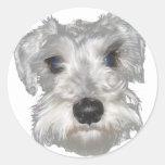 White Miniature Schnauzer Sticker