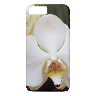 White Moon Orchid (Phalaenopsis Aphrodite) iPhone 8 Plus/7 Plus Case
