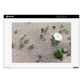 "White Morning Glory Beach Flower 15"" Laptop Decals"