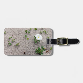 White Morning Glory Beach Flower Luggage Tag