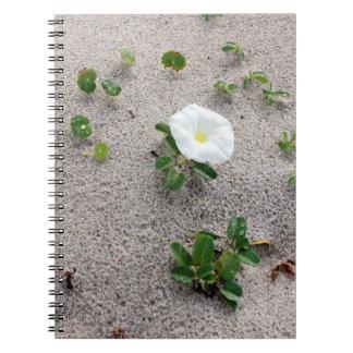 White Morning Glory Beach Flower Spiral Notebook