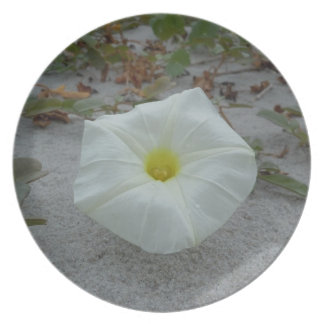 White Morning Glory on the Beach Plate