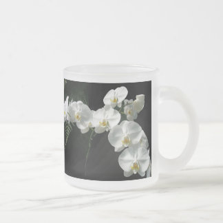 White Moth Orchid Flowers & Ferns Frosted Glass Coffee Mug