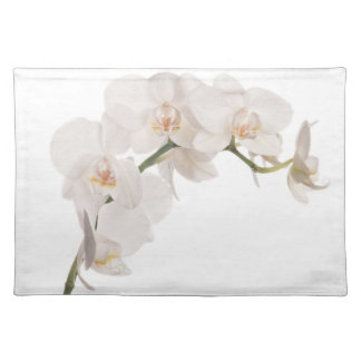 White Moth Orchid Cloth Placemat