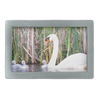 White mother swan swimming with chicks belt buckle