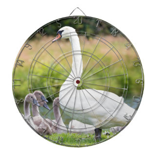 White mother swan with young chicks dartboard with darts