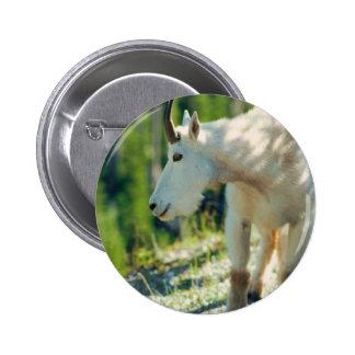 White Mountain Goat Pin