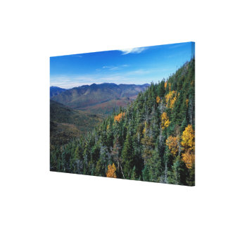 White Mountain N.F., NH. The view from near Canvas Print