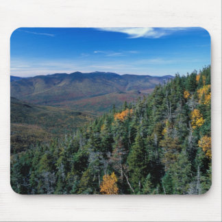 White Mountain N.F., NH. The view from near Mouse Pad