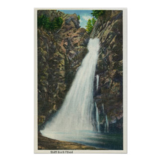 White Mountains Nat'l Forest Poster