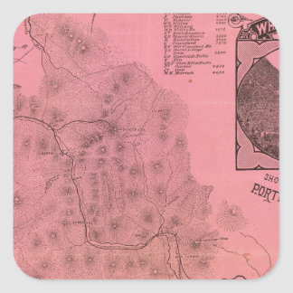 White Mountains top map Square Sticker