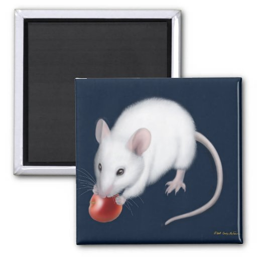 White Mouse Magnet