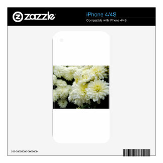 White Mums II iPhone 4 Decal