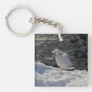 white Muscovy duck in the snow Keychain