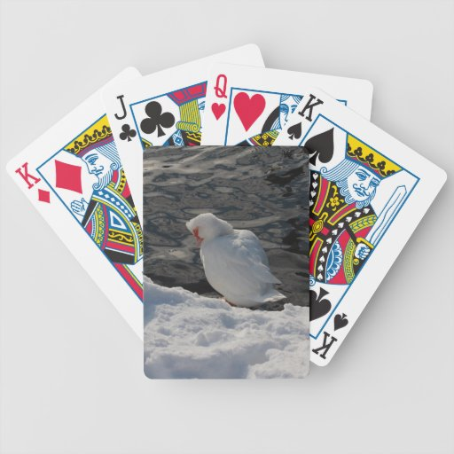 white Muscovy duck in the snow Poker Deck