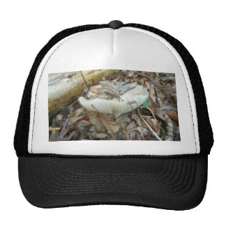 White Mushroom Coordinating Items Trucker Hat