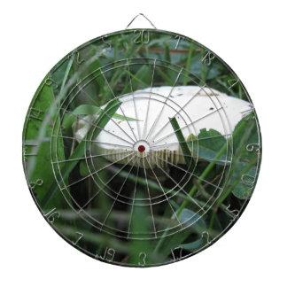 White mushroom on a green meadow dart boards