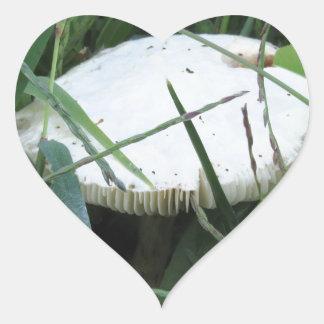 White mushroom on a green meadow heart sticker
