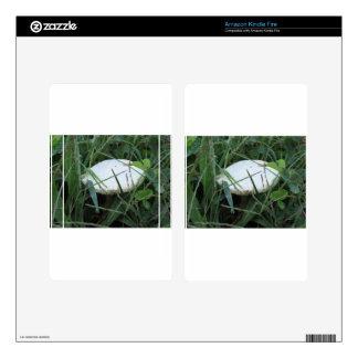 White mushroom on a green meadow kindle fire skins