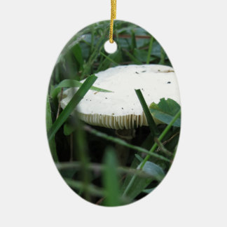 White mushroom on a green meadow Double-Sided oval ceramic christmas ornament