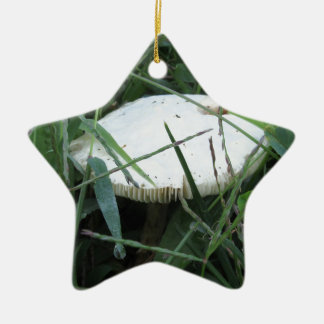 White mushroom on a green meadow Double-Sided star ceramic christmas ornament