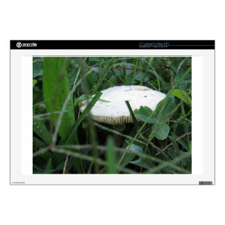 White mushroom on a green meadow decals for laptops