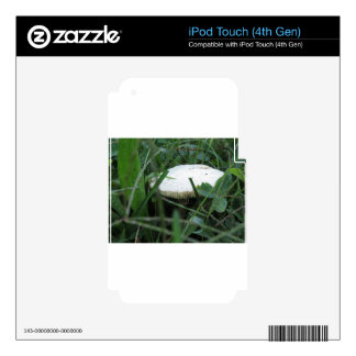 White mushroom on a green meadow skin for iPod touch 4G