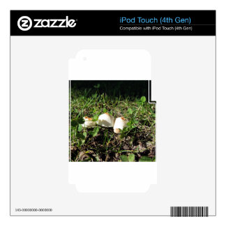 White mushrooms on green background iPod touch 4G skin