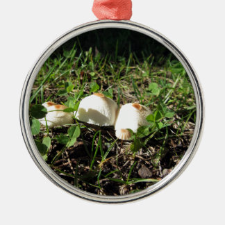 White mushrooms on green background round metal christmas ornament