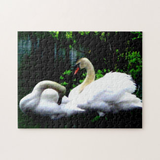 White Mute Swans Jigsaw Puzzle