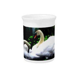 White Mute Swans Pitcher