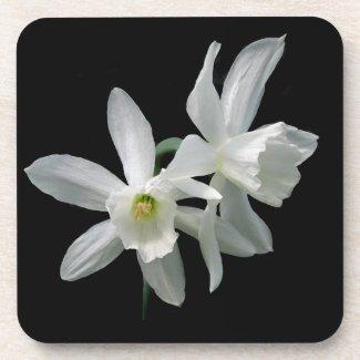 White Narcissus Coaster