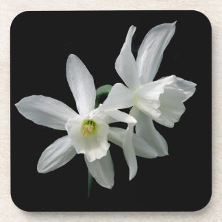 White Narcissus Drink Coaster