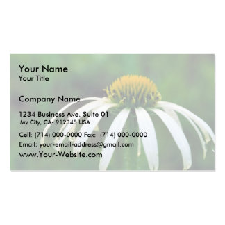 White narrow-leaved Coneflower Double-Sided Standard Business Cards (Pack Of 100)