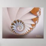 White Nautilus Abstract Seashell Fine Fractal Poster